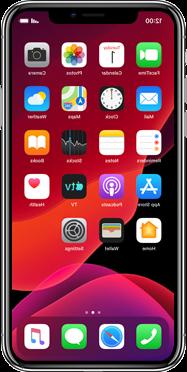 Iphone 11 pro max esim