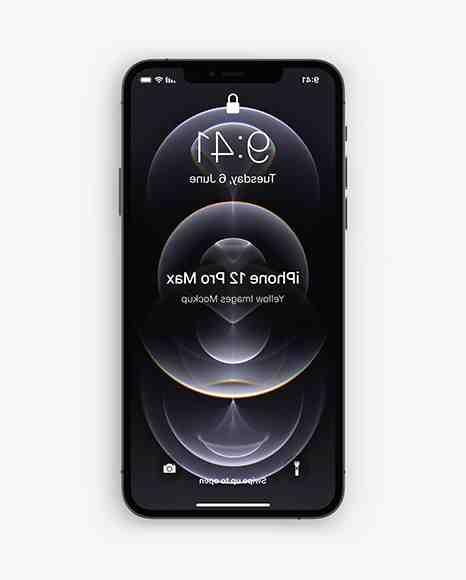 Iphone 12 pro max graphite
