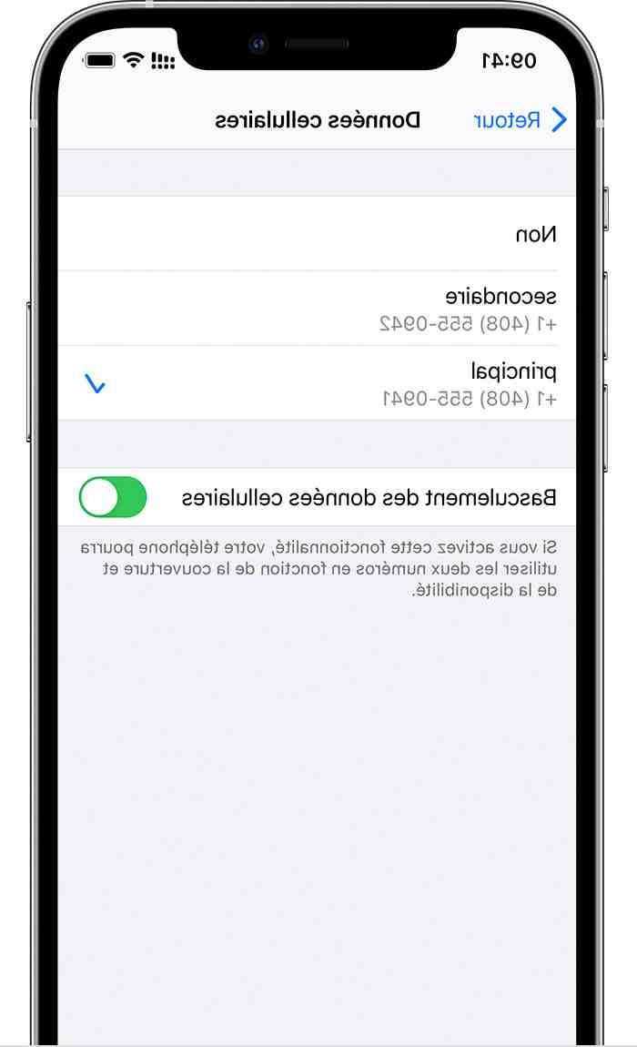 L'Iphone 12 pro max est dual sim